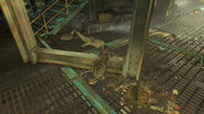 FO4 Fens street sewer (victim 1)