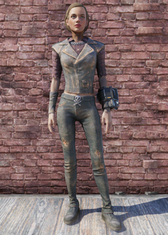 FO76 Road Leathers.png