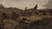 FO76 RE Crashed Vertibird.png