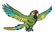 FoS trained parrot