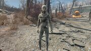 FO4 Synth Seeker.jpg
