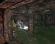 Water in vault 34