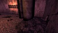 VMC - Bear trap fist HDS