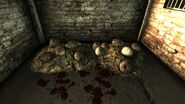 Deathclaw eggs AdamsAFB