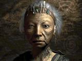 Arroyo elder