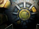 Vault 111
