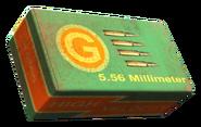 Fo4 5.56mm round