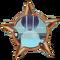 Badge-2675-1