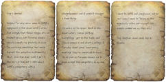 Cog's journal.png