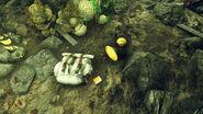 FO76 Glassed cavern (Enola Walker's story 6)
