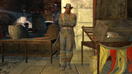 FO4NW Shank1