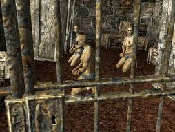 Prisoners of War captives.jpg