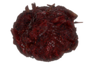 Fo4 meat bag2
