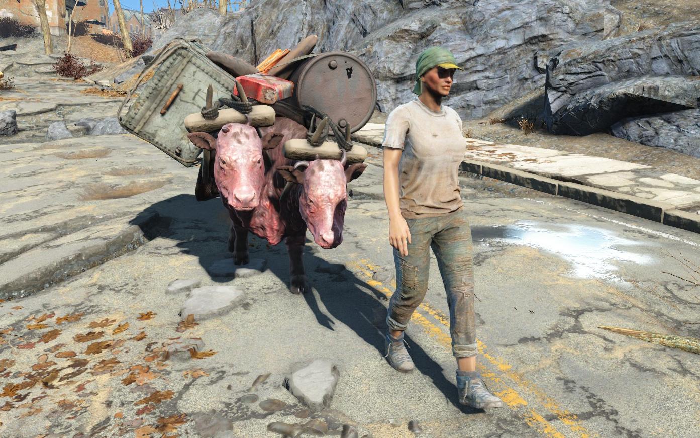 Trader (Fallout 4)