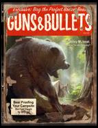 Guns n Bullets F4 3