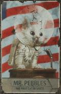 FO4 Cat-Astronaut