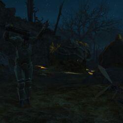 Fallout 4 Begleiter