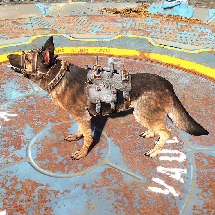 Лёгкая броня для собаки