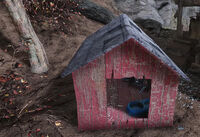FO76 Isolated cabin (doghouse)