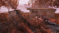 FO76 Marsh cottage 01.png