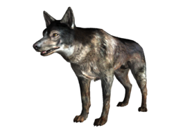 FO3 Little Lamplight dog.png