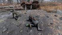 FO76 The Thorn Corpse BoS Base (02)