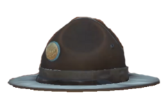 Campaign Hat.png