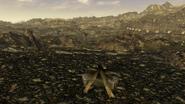 FNV campfire near Primm
