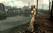 FO3 Sparkle on the bank