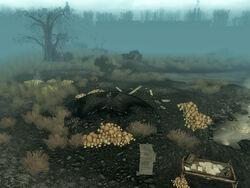 Excavated muck hole 2.jpg