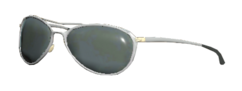 FO76 Patrolman sunglasses.png