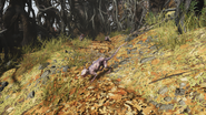 FO76 Cultist Totems (Point Pleasant) (2)