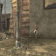 FNV Bug North Vegas resident outside of square.png