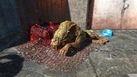 FO4 Mutant hound2