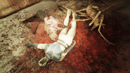 G Walton corpse