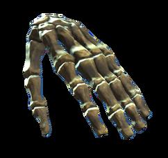 Left hand bones.png