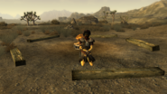 FNV Bug Legion raid camp tied decanus