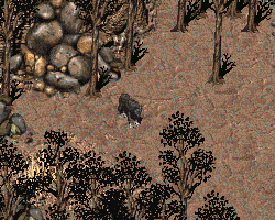 FO2 Smoke in the forest.png