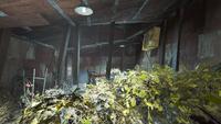 FO4--Greenhouse-Diamond City Market-Interior