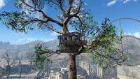 Cappys treehouse