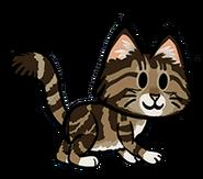 FOS Cat9