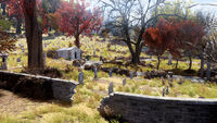 Fo76 Kanawha county cemetery (9)