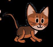 FOS Cat1