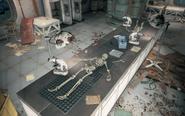 FO4 Med-Tek Research skeleton