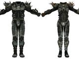 Броня и одежда Fallout: New Vegas