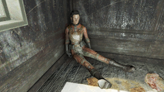FO4 Knight Astlin.png