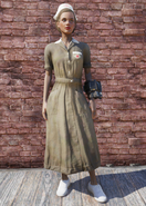 FO76 Asylum Worker Uniform Brown