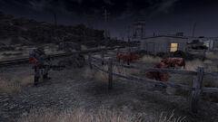 Midnight Ranch Attacks.jpg
