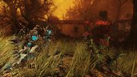 FO76 New flora blast zone 10