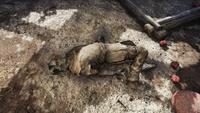 FO76 Flatwoods settler corpse 3